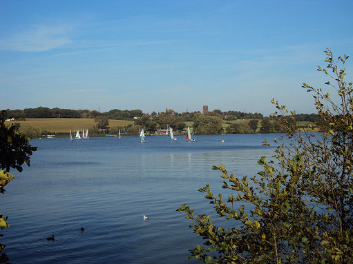 Marbury Country Park