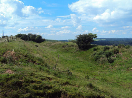 Eddisbury hill fort